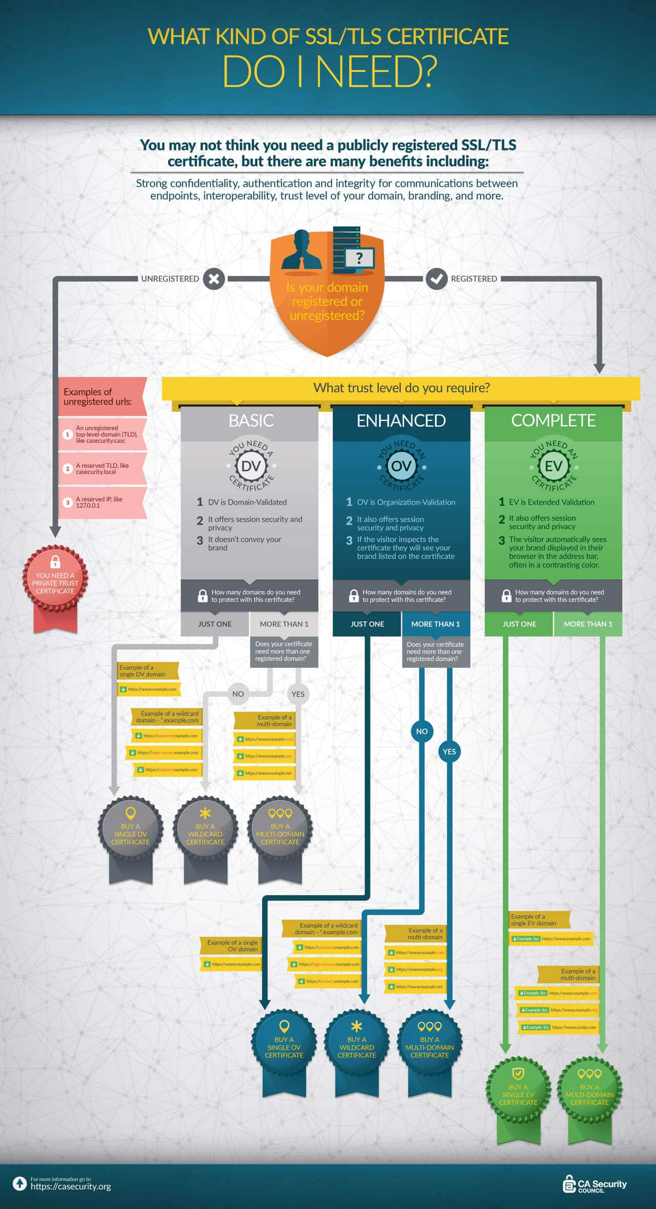 CA Security Council Infographic - What kind of SSL Certificate Do I Need?